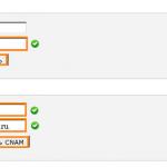 Как прикрепить свой домен к блогу или дневнику на Лиру