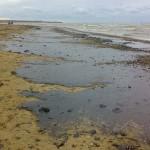 Черное море – бомба замедленного действия