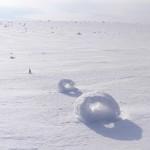 Снежные рулоны – редкое метеорологическое явление
